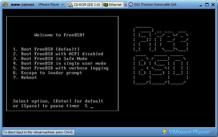 Freebsd виртуальный сервер как установить вордпресс на локальный хостинг